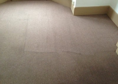 carpet before and after (Small)