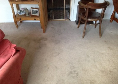 Carpet Before (Small)