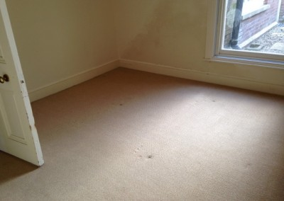 Carpet after (Small)