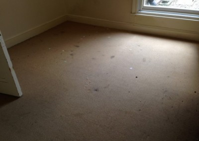 Carpet before(1) (Small)